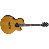 גיטרה אקוסטית מוגברת CORT SFX6W