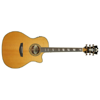 גיטרה אקוסטית מוגברת כולל ארגז D'Angelico