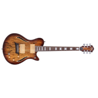 גיטרה חשמלית פיקאפ אקוסטי MICHAEL KELLY