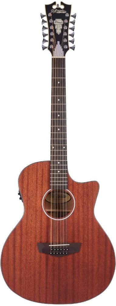 גיטרה אקוסטית 12 מיתרים מוגברת D'Angelico