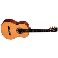 גיטרה קלאסית מקצועית SIGMA CM-6